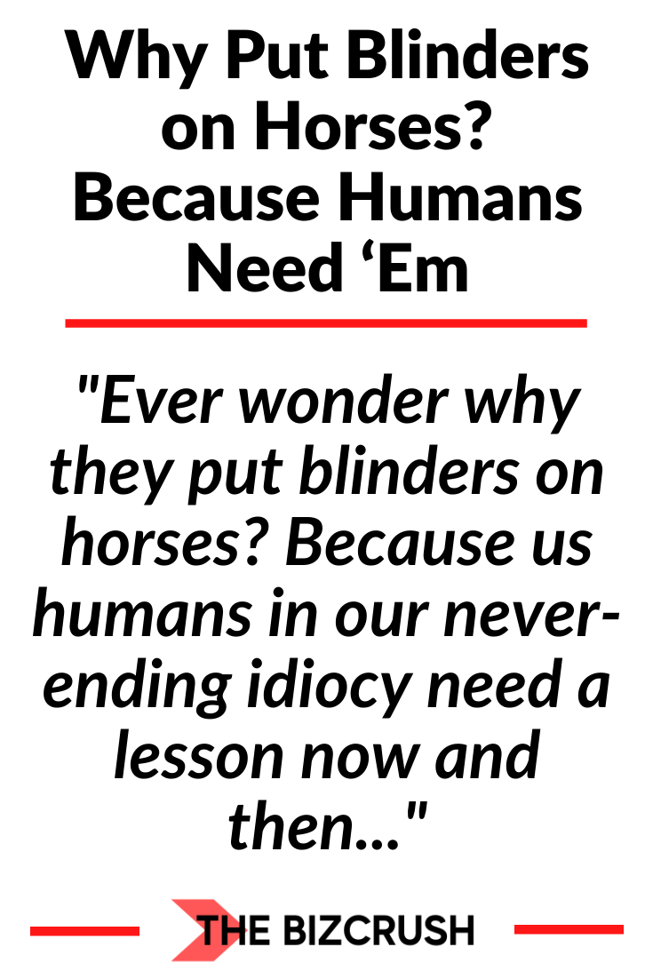 The headline of this post Why Put Blinders on Horses? Because Humans Need 'Em